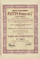 """Anciens Etablissements Pattyn Frères Et Cie """"Pattynco""""  Société Congolaise à Responsablilité Limitée - Titre De 1928 - - Africa"""