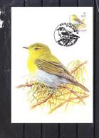 2936 Buzin - Pouillot Siffleur - 1985-.. Uccelli (Buzin)
