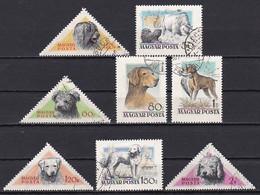 Hungary, 1956, Hungarian Dog Breeds, Set, USED - Gebraucht