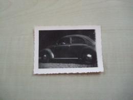 Petite Photo Ancienne COCCINELLE - Coches