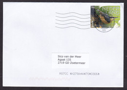 Netherlands: Cover, 2021, 1 Stamp, Nuthatch Bird, Animal (traces Of Use) - Covers & Documents