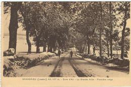 LOZERE : Grandrieu : La Grande Allée - Gandrieux Saint Amans
