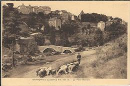 LOZERE : Grandrieu : Le Pont Romain - Gandrieux Saint Amans