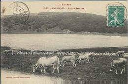 LOZERE : Nasbinals : Lac De Salhèns - Otros Municipios