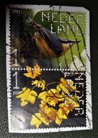 Nederland - NVPH - Xxxx - 2021 - Gebruikt Onafgeweekt - Beleef De Natuur - Paar - Boomklever - Gewone Esdoorn - Used Stamps