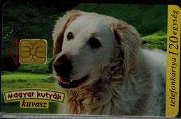 HUNGARY 1997 PHONECARD DOGS USED VF!! - Cani