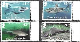 TRISTAN DA CUNHA, 2021, MNH, SHARKS, MARINE LIFE, 4v - Fishes