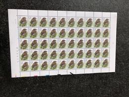 Belgie Buzin Birds Volledig Vel 2533 PRE837 24/1/1994 Plaatnummer 2 - Feuilles Complètes