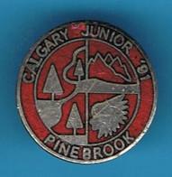 PIN'S //   ** CALGARY JUNIOR '91 / PINE BROOK ** . (B J SalesCalgary) - Golf
