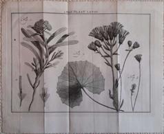 Gravure En Eau Forte XVIIIème Siècle - PLAAT LXVIII - Jan Caspar PHILIPS - Incisioni