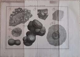 Gravure En Eau Forte XVIIIème Siècle - PLAAT XXXVIII - Jan Caspar PHILIPS - Incisioni