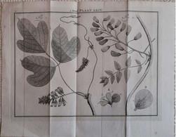 Gravure En Eau Forte XVIIIème Siècle - PLAAT XXXV - Jan Caspar PHILIPS - Incisioni