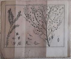 Gravure En Eau Forte XVIIIème Siècle - PLAAT XXVIII - Jan Caspar PHILIPS - Incisioni