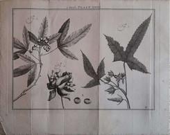 Gravure En Eau Forte XVIIIème Siècle - PLAAT XXVII - Jan Caspar PHILIPS - Incisioni