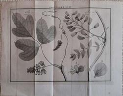 Gravure En Eau Forte XVIIIème Siècle - PLAAT LXIV - Jan Caspar PHILIPS - Incisioni