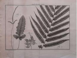 Gravure En Eau Forte XVIIIème Siècle - PLAAT XCIV - Caspar Jacobsz PHILIPS - Signature Dans La Planche - Incisioni