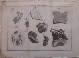 Gravure En Eau Forte XVIIIème Siècle - PLAAT XLVII - Caspar Jacobsz PHILIPS - Signature Dans La Planche - Incisioni