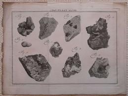 Gravure En Eau Forte XVIIIème Siècle - PLAAT XLVIII - Caspar Jacobsz PHILIPS - Signature Dans La Planche - Incisioni