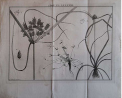 Gravure En Eau Forte XVIIIème Siècle - PLAAT LXXXVIII - Caspar Jacobsz PHILIPS - Signature Dans La Planche - Incisioni