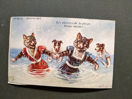 Llustration ELLEN CHATS HUMANISES HABILLES Chat Chien OILETTE MIXED BATHING Bain Baigneur MeR CARTE COLLEE SUR SUPPORT - Dressed Animals