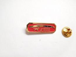 Beau Pin's Pins En Relief , Couteau Laguiole , Le Fidèle , Chien , Knife , ATTENTION : Pointe Recollée - Other