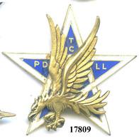 17809 .AIR .ETATS ASSOCIES .  PDTCLL . GROUPE AERIEN ATTAQUE EN PIQUE . - Luftwaffe