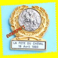 Pin's Fête Du Cheval, GABRIAC, AVEYRON, Pin's En Zamac, Horse, 2 Scans - Animaux