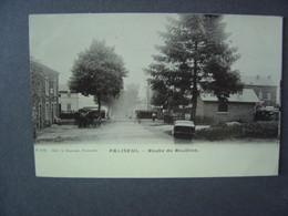 PALISEUL - Route De Bouillon  - Voir Oblitération - Paliseul