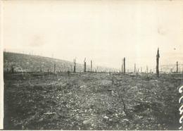FRONT DE VERDUN LE BOIS DE LA WAVRILLE  WWI PHOTO ORIGINALE  18 X 13 CM - Guerra, Militari