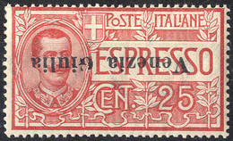 "* 1919, ""Soprastampa Capovolta"" Espresso 25 C. Rosso, Sass. E1a / 1200,- - Venezia Giulia"