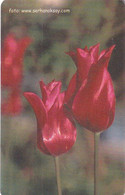 TURKEY(chip) - Flowers(200 Units), 04/03, Used - Fiori