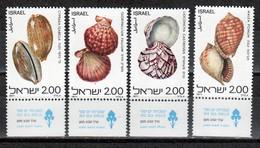 ISRAEL 668-71 (1977)  MNH ** - Shells - Coquillages - Schelpen - Ungebraucht (mit Tabs)
