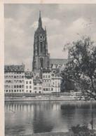 Frankfurt Main - Dom Von Der Maininsel - 1955 - Frankfurt A. Main