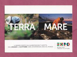 Advertising Cardboard- EXPO Milano 2015. Terra Mare.Sponsor TIM. Post Card's Sizes. - Telefonia