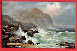 THE SAVAGE ROCK THAT HIDES THE SEA MEW RAPHAEL TUCK OILETTE SERIES  Pu 1906 - Tuck, Raphael