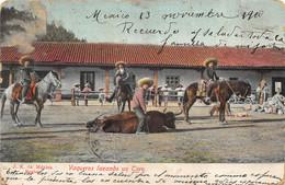 Mexico - Vaqueros Lazando Un Toro - Mexico