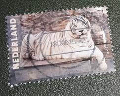 Nederland - NVPH - 3334 - 2015 - Gebruikt - Cancelled - Charlotte Dumas - Portretten - Zeus - Witte Tijger - Used Stamps