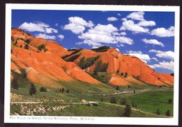 AK 001948 USA - Wyoming - Red Hills Im Grand Teton National Park - Other
