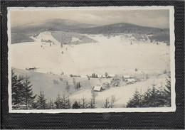 AK 0791  Bielendorf - Grafschaft Glatz / Winterzauber Um 1930-40 - Schlesien