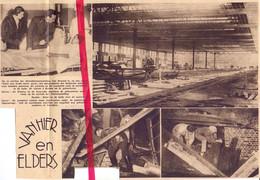 Orig. Knipsel Coupure Tijdschrift Magazine - Brussel - Ongeval In Expohallen, Pompiers Zoeken Slachtoffers - 1934 - Sin Clasificación