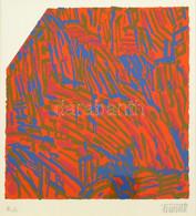 Németh János (1936-): Kompozíció Narancsban. Szitanyomat, Papír, Jelzett, Művészpéldány E.A. Jelzéssel, 20,5x21 Cm - Non Classificati