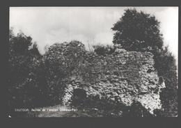 Sautour - Ruines De L'ancien Château-Fort - Philippeville