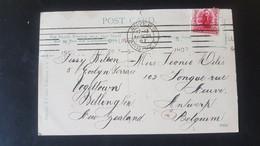 Manapouri - Used In Wellington - Sent To Antwerpen Belgium - Used Stamps