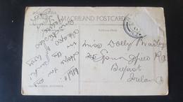 Whakarewarewa - Kereru Geyser - Sent To Belfast Ireland - Unclassified