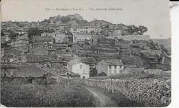 BRUNIQUEL (T-et G-) :Vue Générale ( Côté Sud ) - Altri Comuni