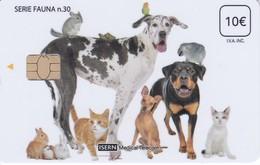 ISN-236 TARJETA DE ESPAÑA DE ISERN  DE LA SERIE FAUNA Nº30 (PERRO-CAN-DOG-GATO-CAT-CONEJO-RABBIT) - Non Classificati