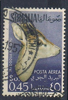 1955 - SOMALIA AFIS - ANIMALI POSTA AEREA / AIRMAIL ANIMALS. USATO / USED - Somalia (AFIS)