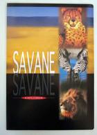 Quaderno BM Savane Explorer Vintage  Nuovo - Non Classificati