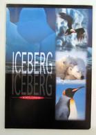 Quaderno BM Iceberg Explorer Vintage  Nuovo - Non Classificati