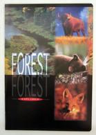 Quaderno BM Forest Explorer Vintage  Nuovo - Non Classificati